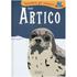 Nell'Artico. Incontra gli animali - Sebastiano Ranchetti;Laura Ottina