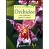 Orchidee. Cure colturali, generi e specie - Stefano Milillo;Gianmaria Conte