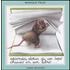 Seconda storia di un topo chiuso in un libro... - Monique Felix