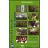 Parco Nazionale di Val Grande. Con DVD - Silvano Vinceti