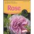 Rose. Le 100 più belle rose da balcone e da giardino