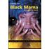 Black mama. La vedova nera - Iceberg Slim