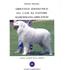 Obiettivo zootecnico sul cane da pastore maremmano-abruzzese. Antico custode degli armenti - Fabrizio Bonanno