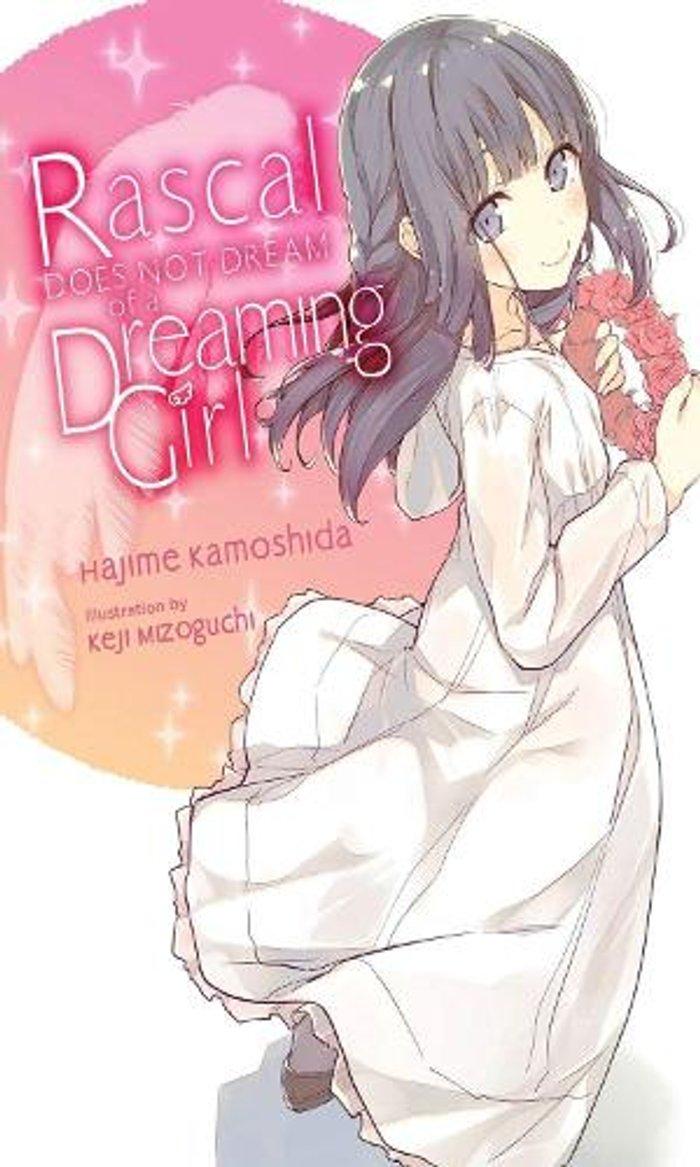 Rascal Does Not Dream of a Dreaming Girl (light novel)