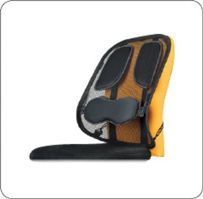 Fellowes Fellowes Professional Series Mesh Back Support Black 8029901