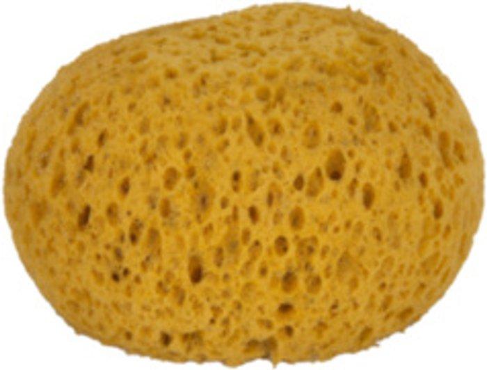 The Range Artist's Natural Feel Wool Sponge