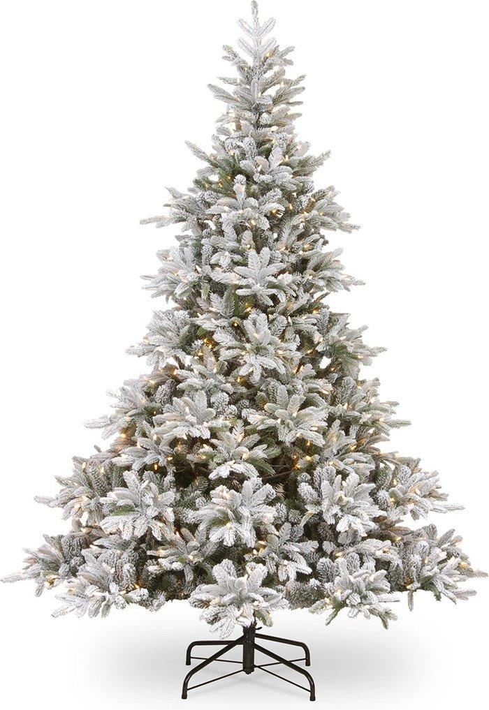 National Tree Company National Tree Company Frosted Andorra Feel Real Fir Pre-Lit Christmas Tree - 6ft