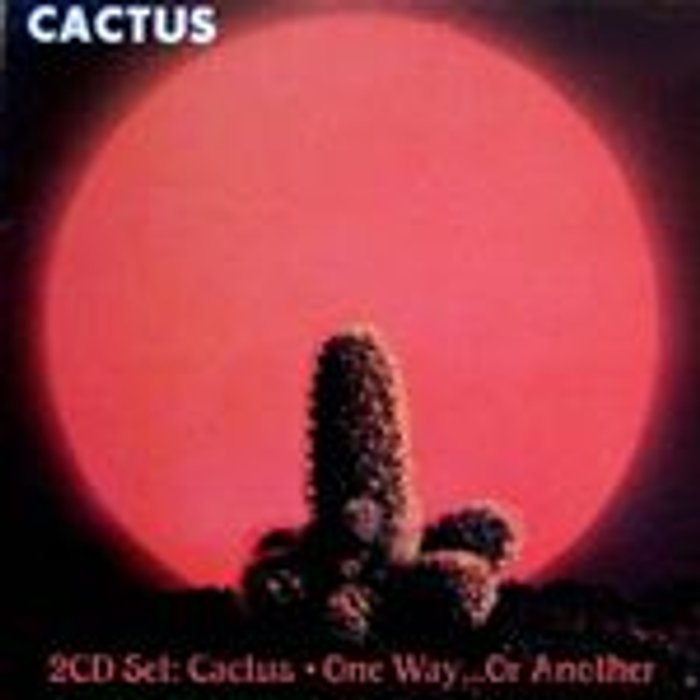Cactus  One Way…Or Another