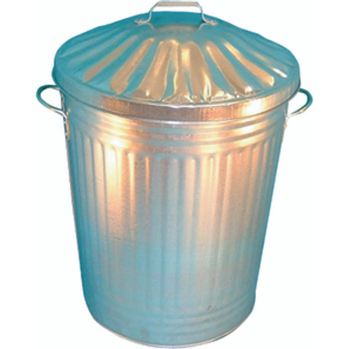Slingsby Galvanised Dustbin With Lid - Silver